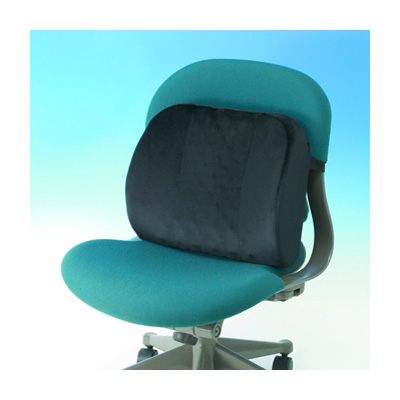 Shine Back Support Cushion